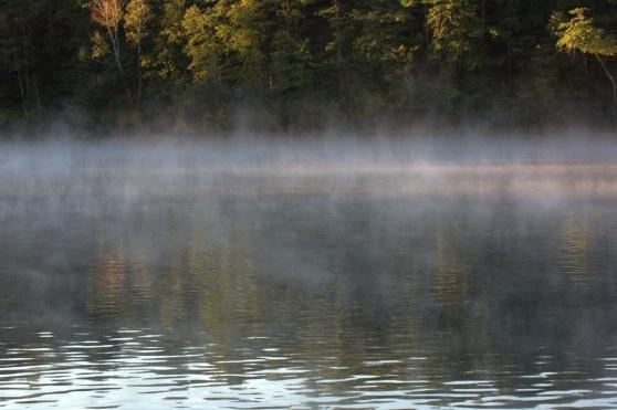 walden mist